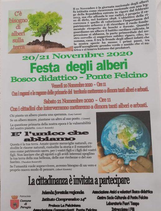 Festa degli Alberi 20-21 novembre 2020 al Bosco Didattico di Ponte Felcino